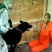 More Bush-era prison abuse photos to emerge