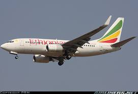 Aridi: Ethiopian Plane Report to be Issued within Days