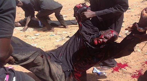 Alahednews:Nigerian Army Kills Dozens in Brutal Crackdown