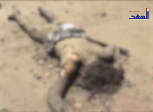 US-Saudi Aggression on Yemen: Brutality Martyrs Dozens