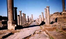 Syria Terrorists Evacuate, Loot Daraa Historic Sites