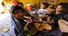 The Forgotten Crisis: FAO Warns of Mass Starvation in Yemen