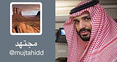 Mujtahidd: Establishing 'Drones' Factory in S. Africa a Saudi Trick to Sell to 'Israel'
