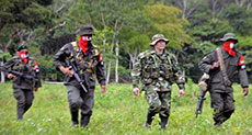 Colombia: Army Op Kills ELN Rebel 10 Days from Peace Talks