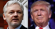 Wikileaks Supporters Call on Trump to «Pardon» Assange