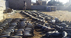 Aleppo Arms Finds Expose CIA Arms Trades for Daesh