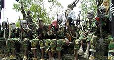 Dozens of Boko Haram Terrorists Surrender in Southern Niger