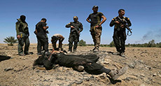 Iraqi Forces Kill 76 Daesh Terrorists in Mosul -Reports