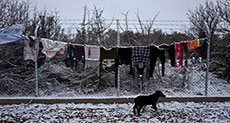 Cold Increasing Death Toll in Europe