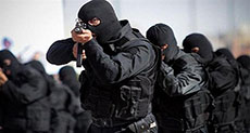Daesh Elements Arrested in Vicinity of Tehran