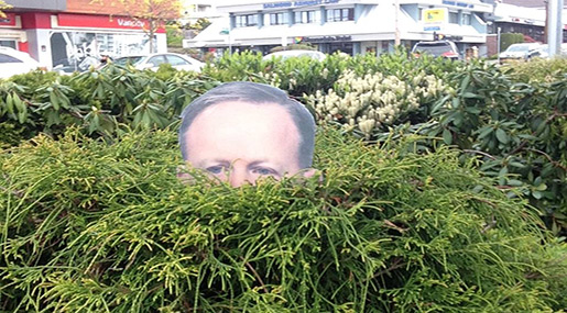 Canadian Woman's Spicer Cutout in Bush Goes Viral!