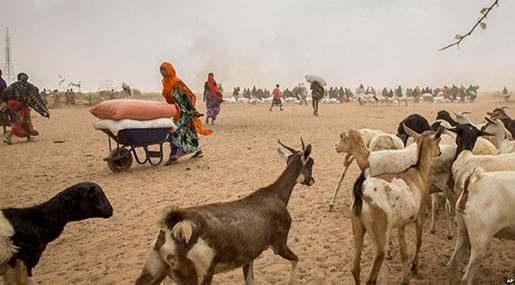 Ethiopia Drought: 8.5 Million Hungry