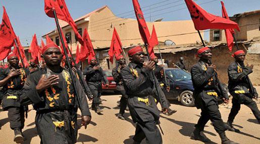 Nigeria Crackdown: IMN Slams Government's Ban on Ashura Procession in Sokoto