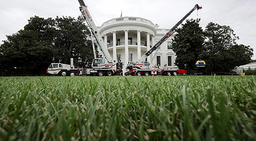 Trump Spends $1.75m on White House Renovations