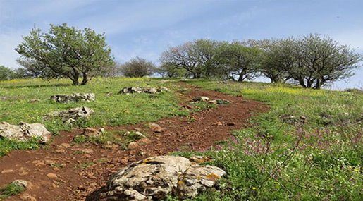 «Israel» Approves Hiking Trail Through West Bank, Golan
