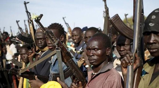 S Sudan Conflict: Great Lakes' Fighting Death Toll Rises to 170