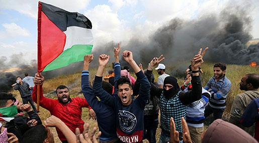 Stop Killing Unarmed Civilians in Gaza