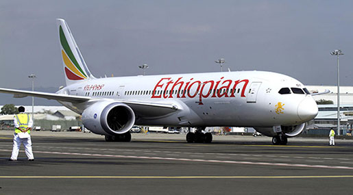 Ethiopia: Telecoms, Airline Opened Up To Private, Foreign Investors