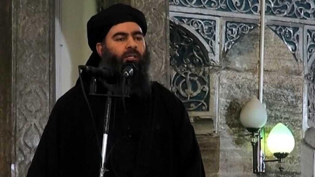 Daesh: Al-Baghdadi's Son Killed in Syria