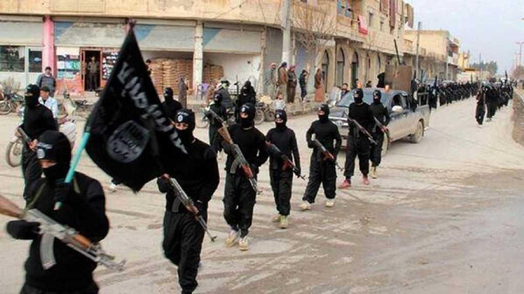 Egypt: Terrorist Daesh Leader Killed in Sinai