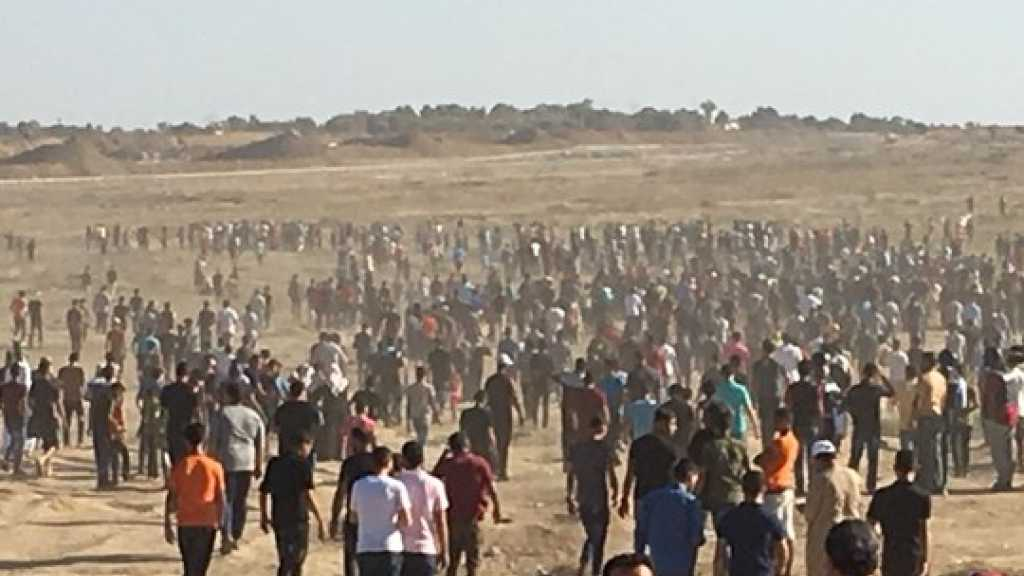 2 Palestinians Martyred, Several Injured on 'Great March of Return'
