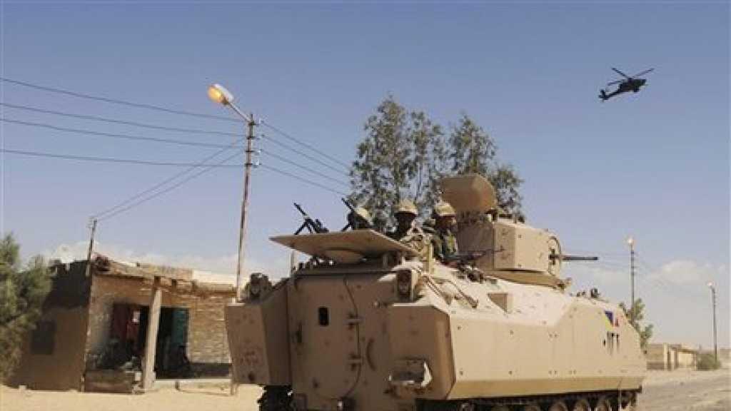 Egypt: 20 Terrorists Killed in Operations