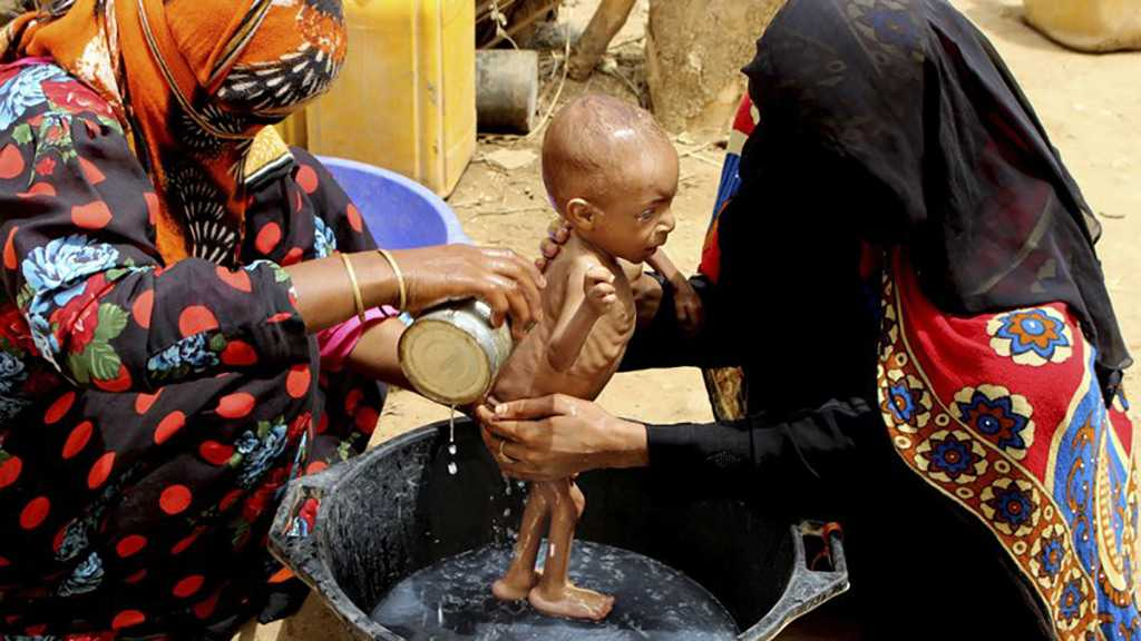 In A Remote District, Starving Yemenis Live Off Leaves