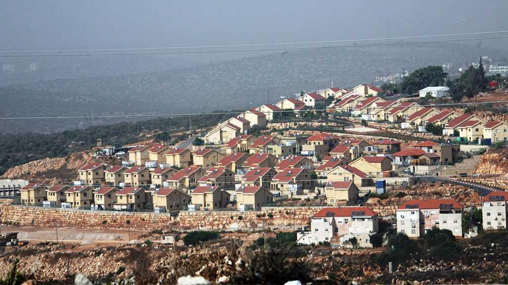 Lieberman to Approve 31 New Settler Units in Al-Khalil