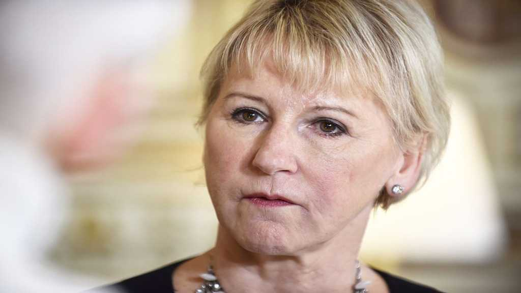 Swedish FM: Yemen Consultations are the First Step on the Long Road to Peace
