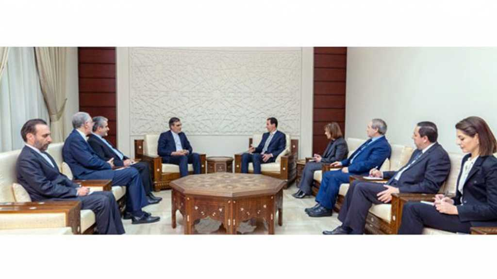 Al-Assad Receives Ansari: For a Political Process Led by Syrians