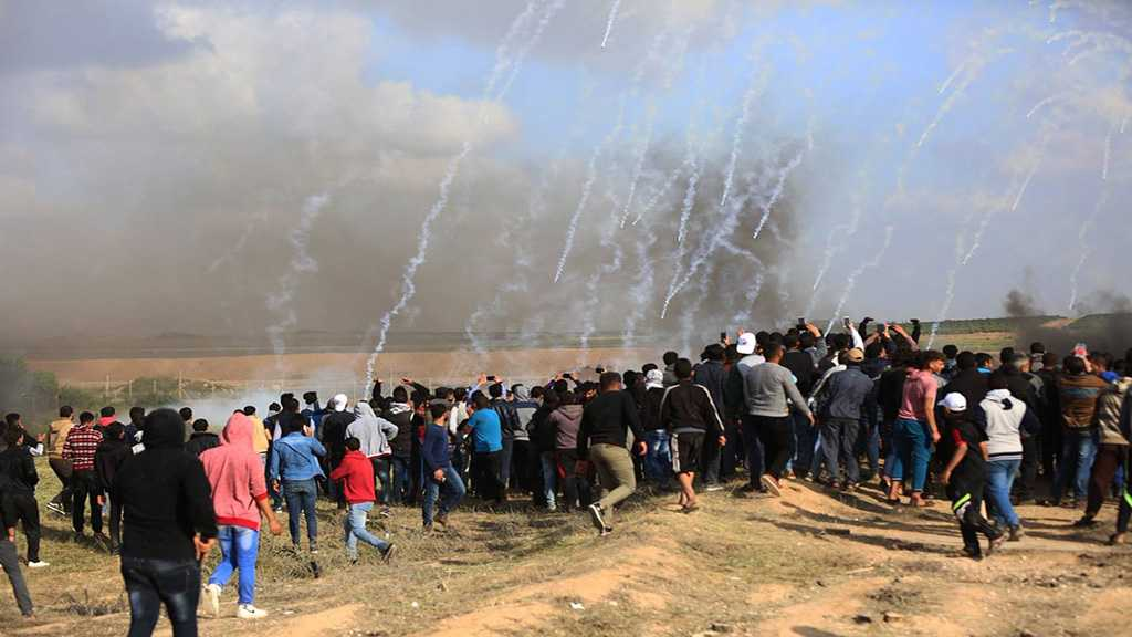 "Great Return Protests: ""Israeli"" Forces Injure 23 Palestinians in Gaza"