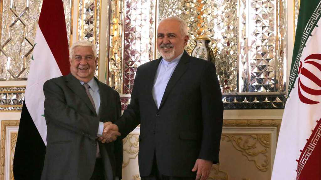 Zarif: Terrorists Don't Want Stability in Syria, Region