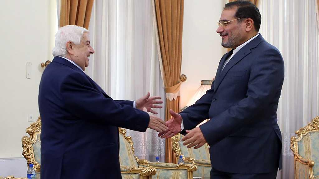 Shamkhani: Iran-Syria Cooperation Will Continue