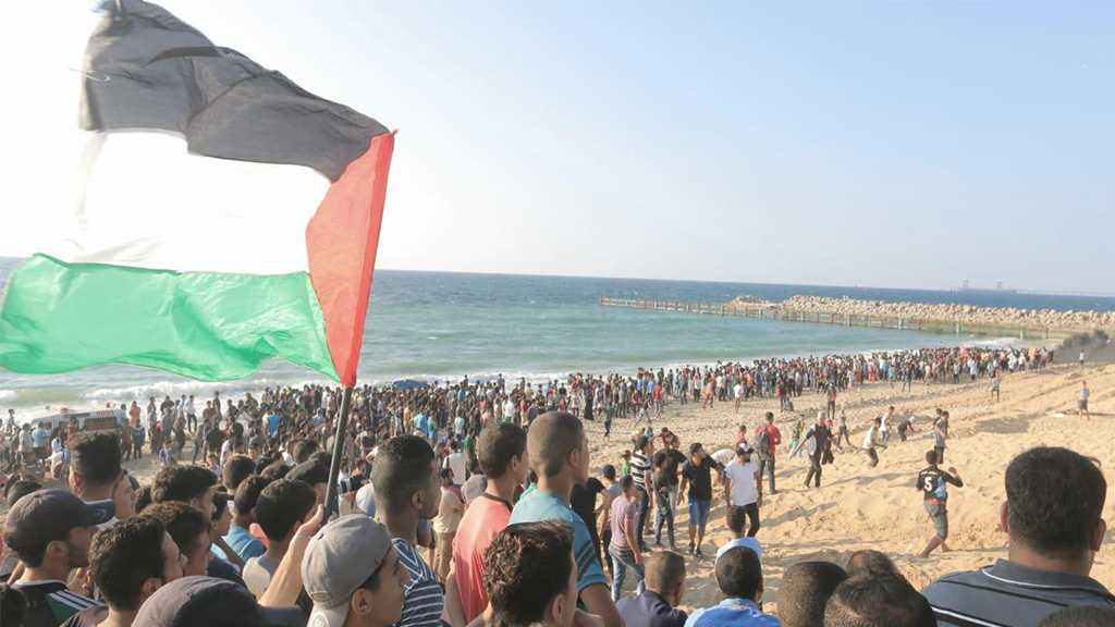 Gaza: Dozens Injured During Naval Protest against 'Israeli' Blockade