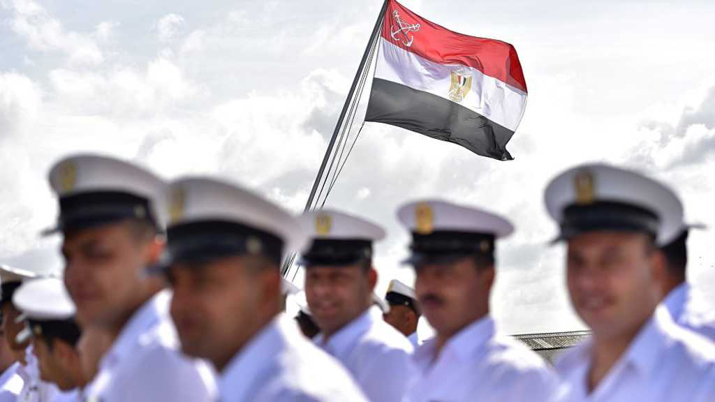 Egypt Pulls Out of US-Led 'Arab NATO' Initiative – Report