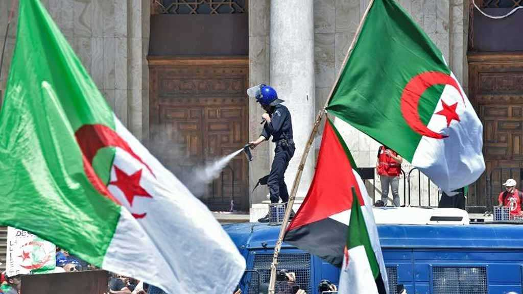 Algeria Riot Police Step Aside in Face of Protesters