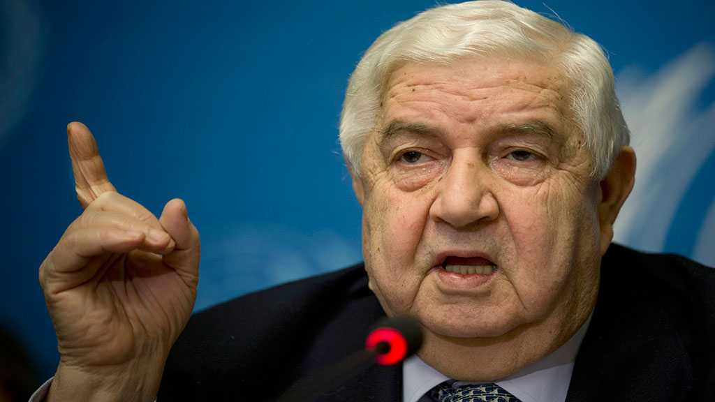 Syrian FM: International Community Must Confront US Economic Terrorism