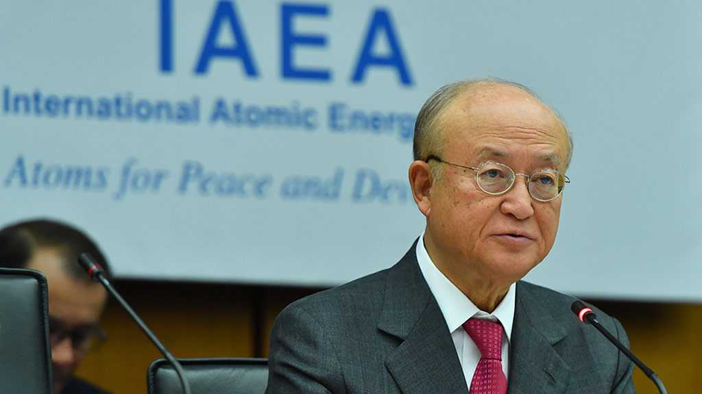 IAEA Recognizes Palestine as a State