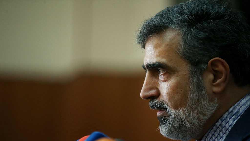 Iran Keeping Window of Diplomacy Open - AEOI