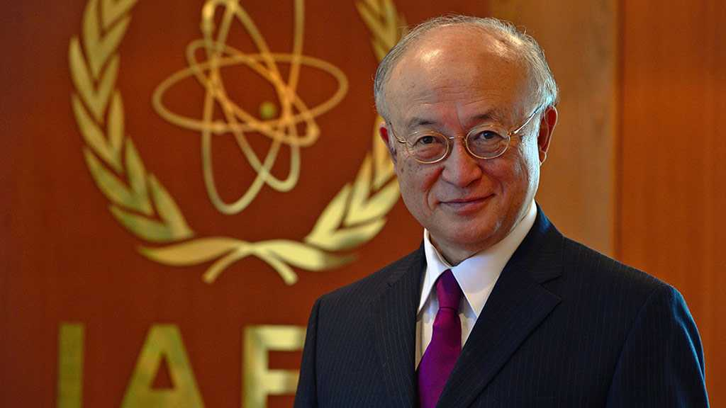UN Nuclear Watchdog's Chief Plans to Step Down Early