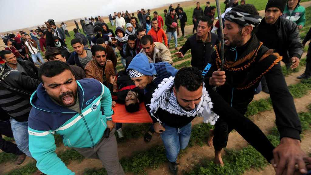 """Israeli"" Forces Wound 98 Gazan Protesters"