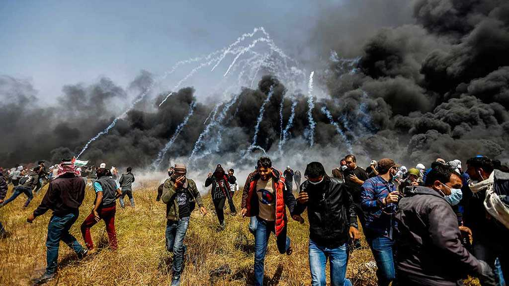 Palestinian Martyred by «Israeli» Fire in Gaza Border