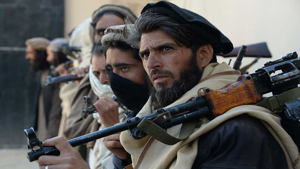Taliban Kill 14 Militants in Afghanistan