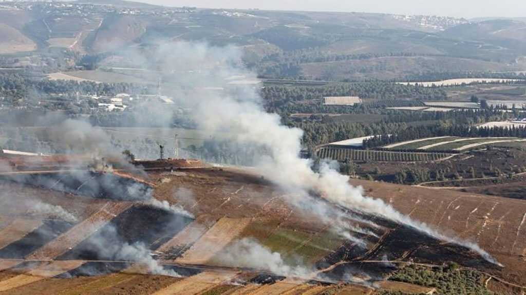 About the 'Avivim' Operation: Hezbollah Breached All 'Israeli' Fortifications, Ready to Air Video
