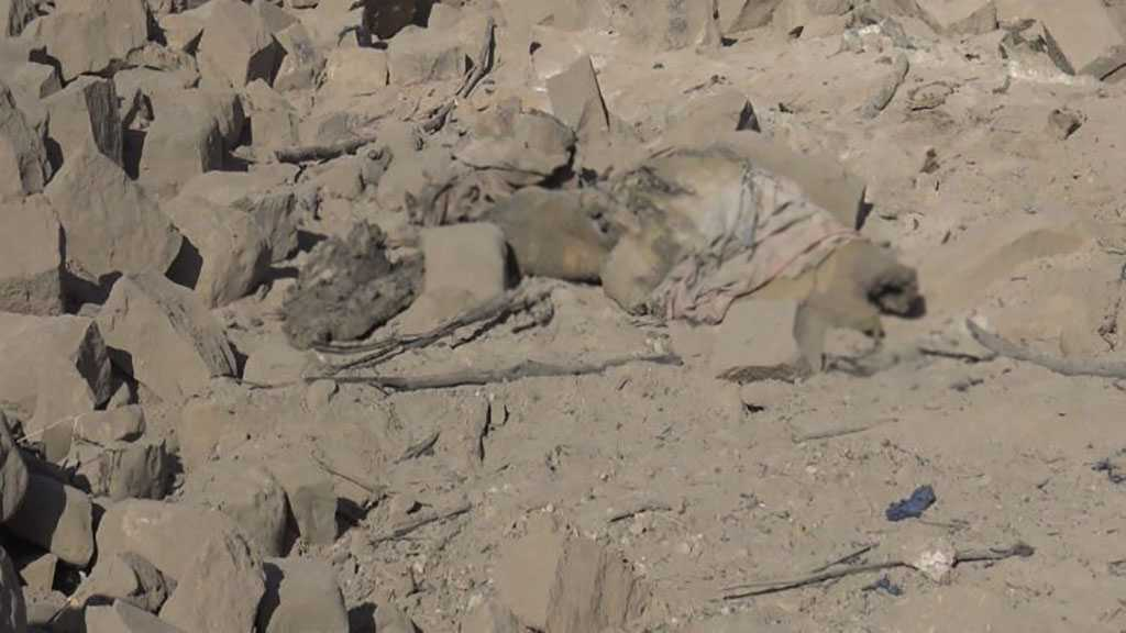 Saudi Airstrikes Hit Yemen's Dhale'e: At Least 16 Martyred, Children Included