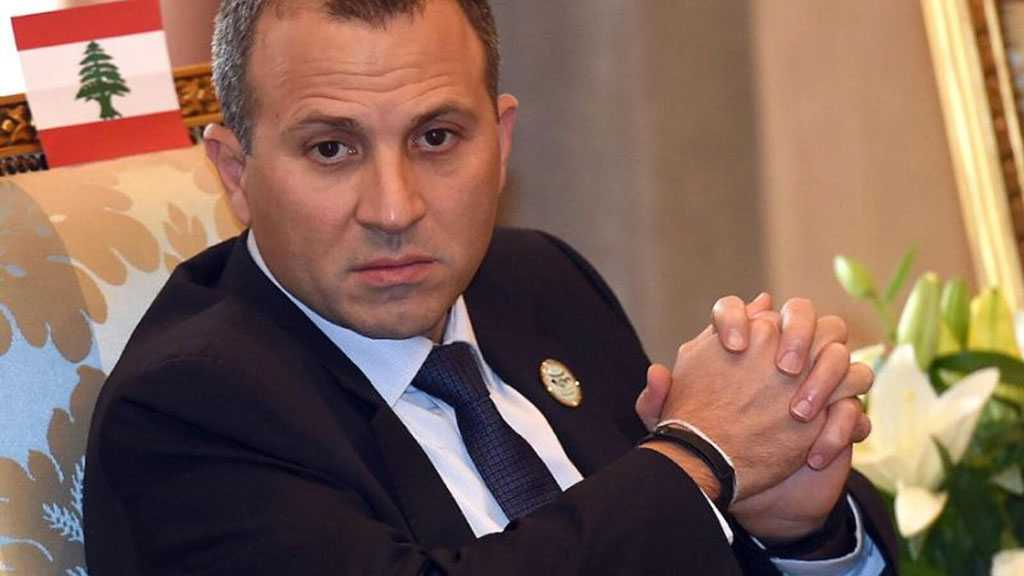 Bassil: Domestic Partners are Conspiring against Lebanon's Economy