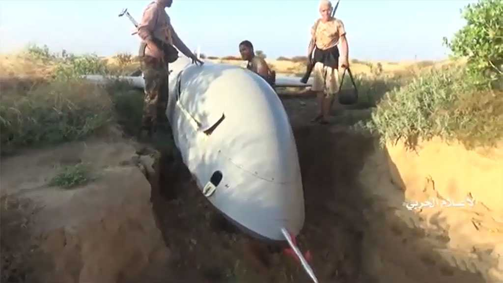 Yemeni Fighters Shoot down 'Wing Loong' Spy Drone over Hajjah [video]