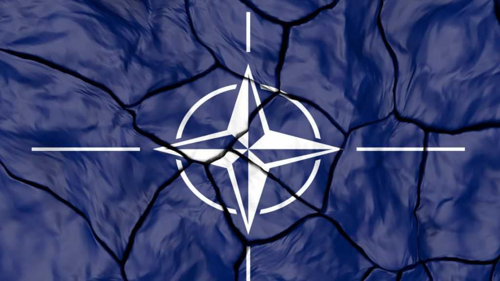 Ex-Austrian FM Believes NATO Becomes Increasingly Fractured