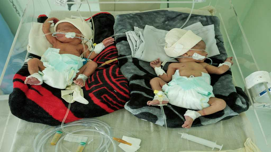Aid Group Warns of Yemen Dengue Epidemic: 78 Child Dead