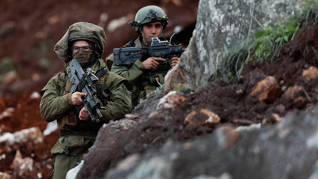 """Israeli"" Patrol Breaches Technical Fence at Mays al-Jabal"